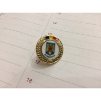 Insigna cu pin metalica  Steag si Stema Romania